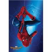 POSTER 115 SPIDERMAN HOMECOMING 1