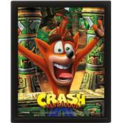 CRASH BANDICOOT CADRE 3D LENTICULAIRE MASK POWER UP