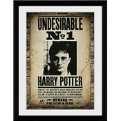 HARRY POTTER COLLECTOR PRINT UNDESIRABLE N° 1 /2
