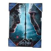 HARRY POTTER AND VOLDEMORT GLASS POSTER 30X40