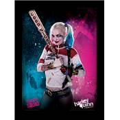 POSTER 112 SUICIDE SQUAD HARLEY QUINN CADRE 30x40cm GELCOAT