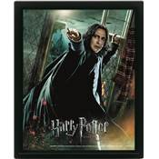HARRY POTTER CADRE 3D LENTICULAIRE DEATHLY HALLOWS SNAPE